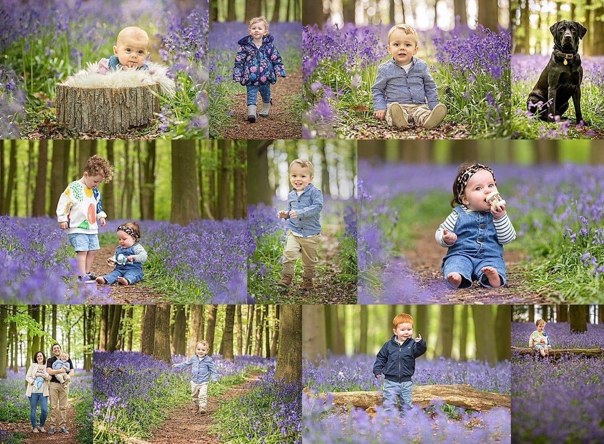 Bluebells Dockey Woods Photographer