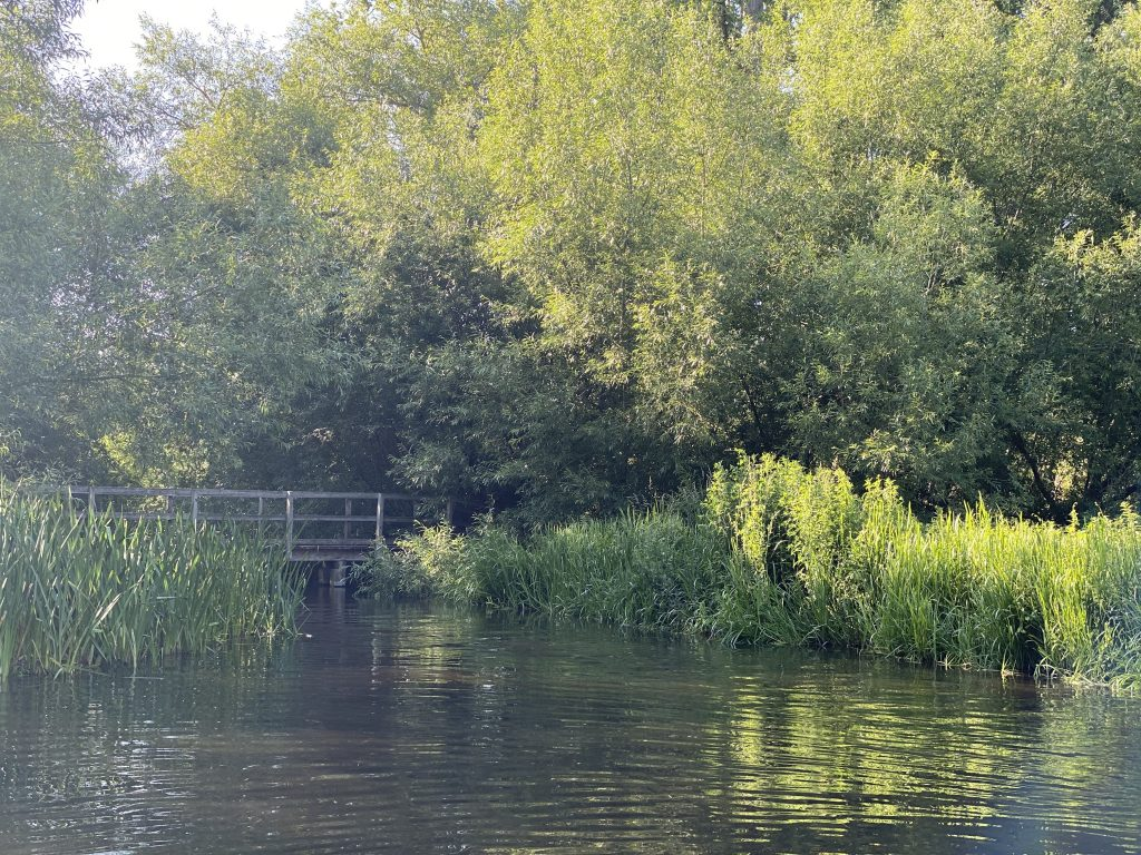 Paddle Near Berkhamsted