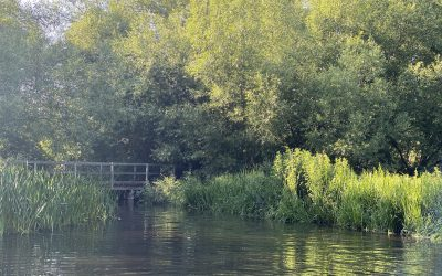 Places To Paddle With Children Near Berkhamsted