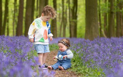5 Places to Find Flower Fields Near Berkhamsted
